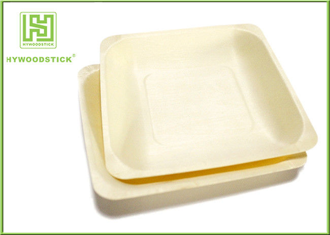 Sturdy Fancy Throw Away Plates , Premium Hotel Disposable Catering Plates